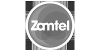 zamtel-grey